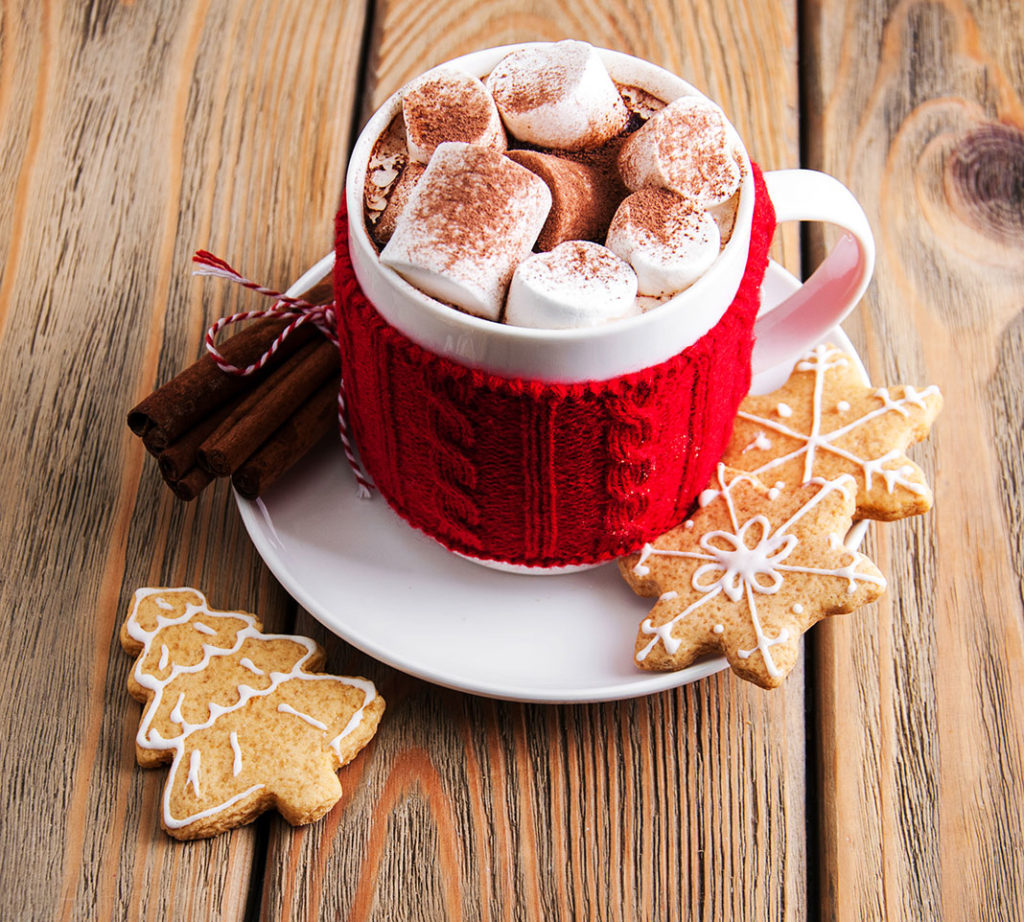 delicious hot Chocolate with Marshmellows